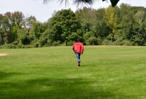 費用対効果の高いマラソン練習。
