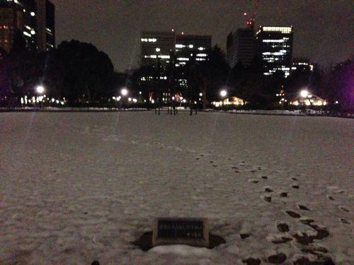 僕らはいつから大雪を憎むようになってしまったのだろう。