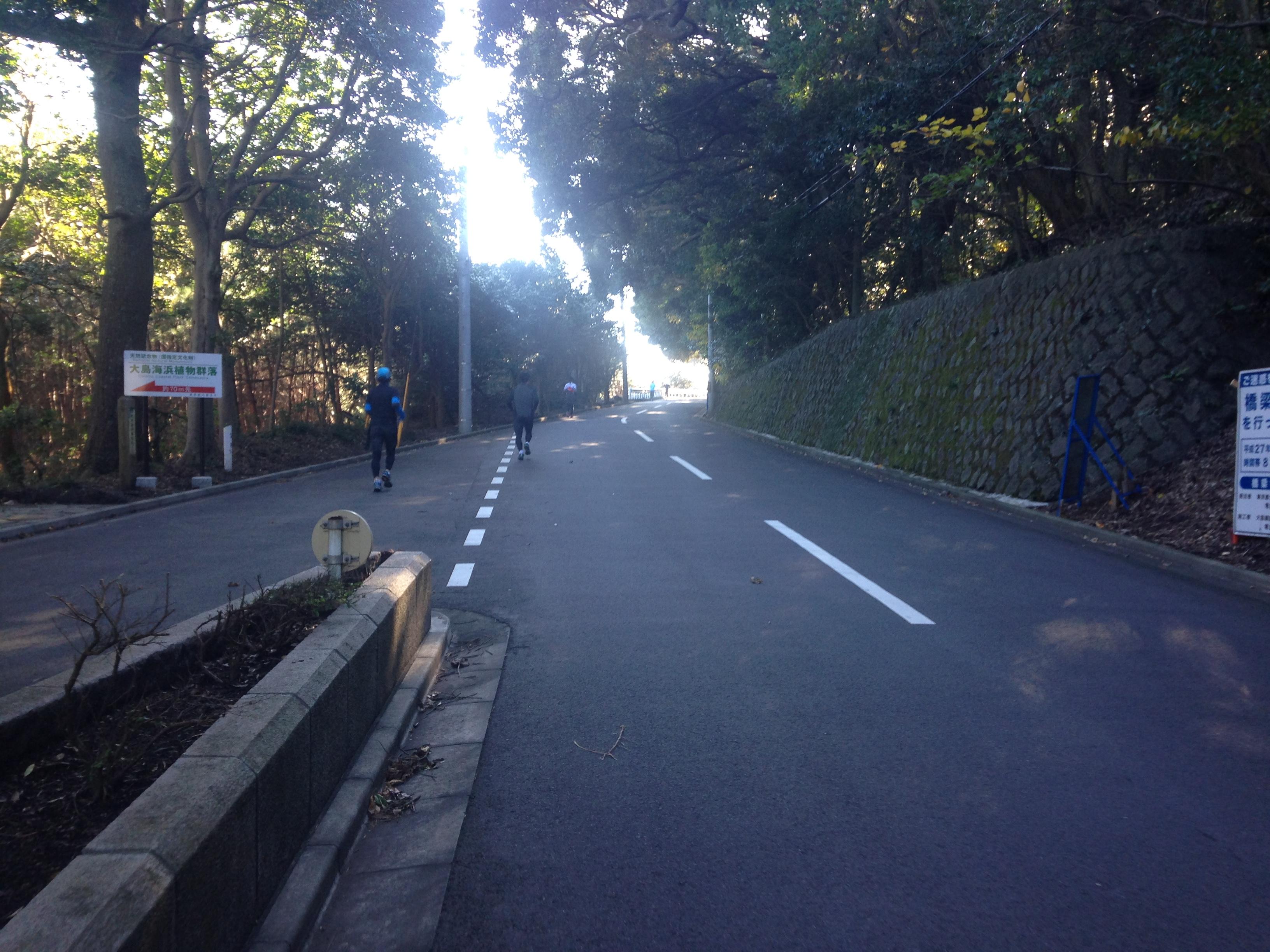 第4回伊豆大島マラソン!腸脛靭帯炎の再発でつらく苦しい42.195kmに。その4