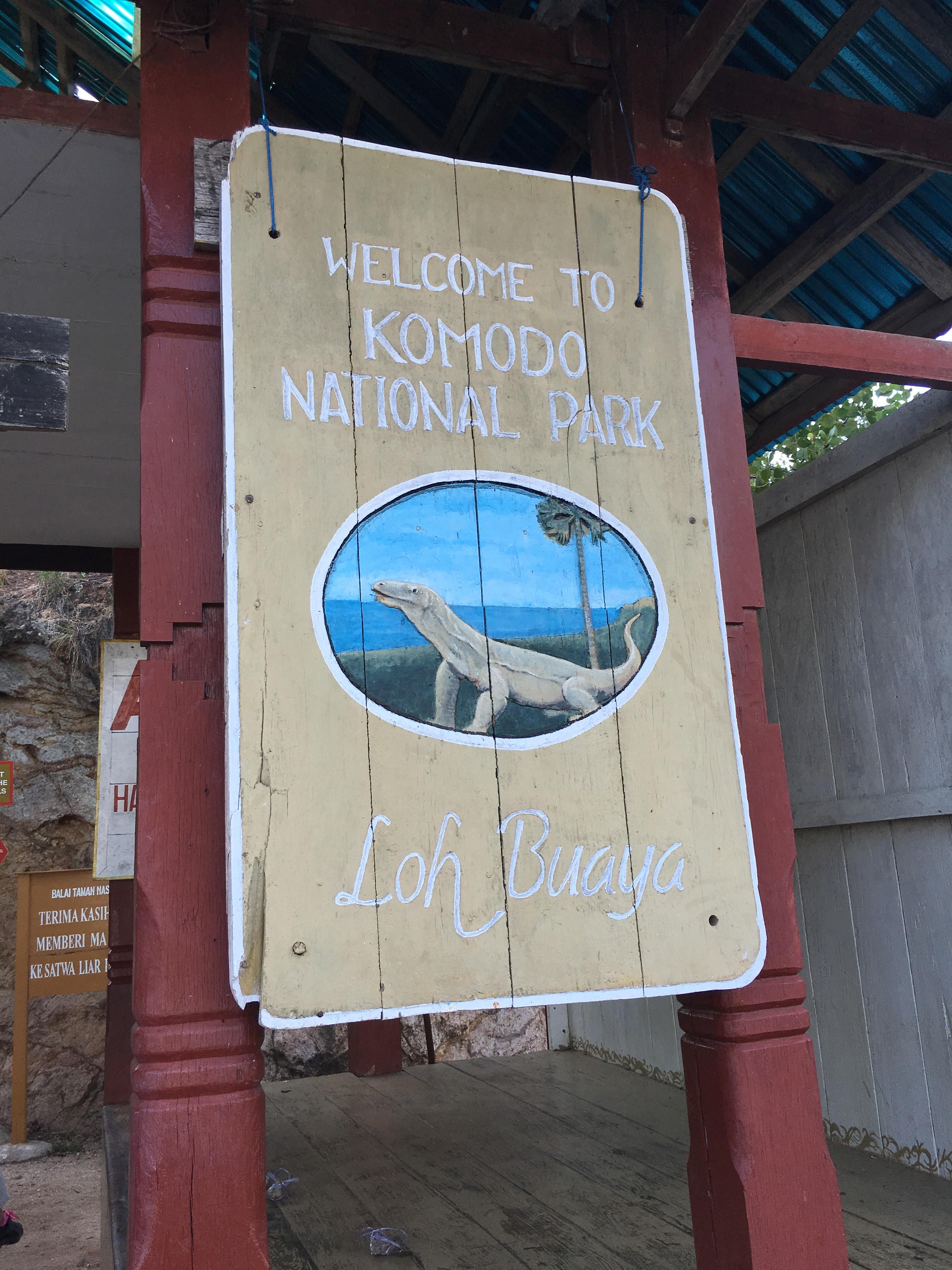 インドネシア、コモド島クルーズの話~ダイビングとMGとコモドドラゴン~その5