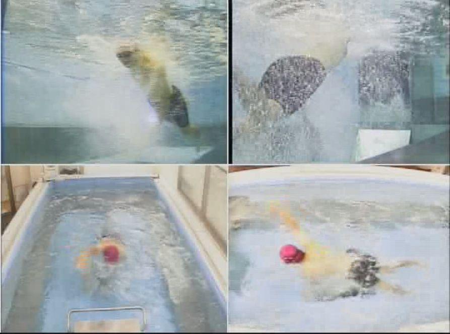 スイムも2年間やればカナヅチを卒業できる、かも!?今の私の泳ぎを公開します~ズル水着編~