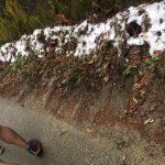 32kmから17kmに変更となった第9回ハセツネ30K完走記その3~後半~