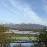 2017年野辺山ウルトラマラソンを振り返るブログ。スタートから30kmまで