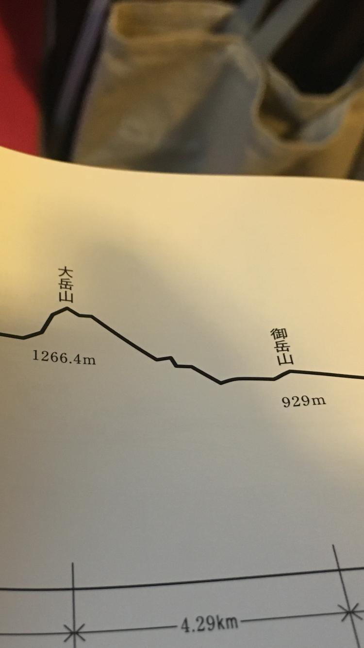 第25回ハセツネCUP完走レポート⑪~大岳山から日の出山まで~