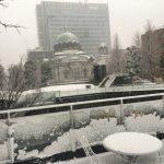 逆張りの発送が大雪によるストレスを軽減してくれる。