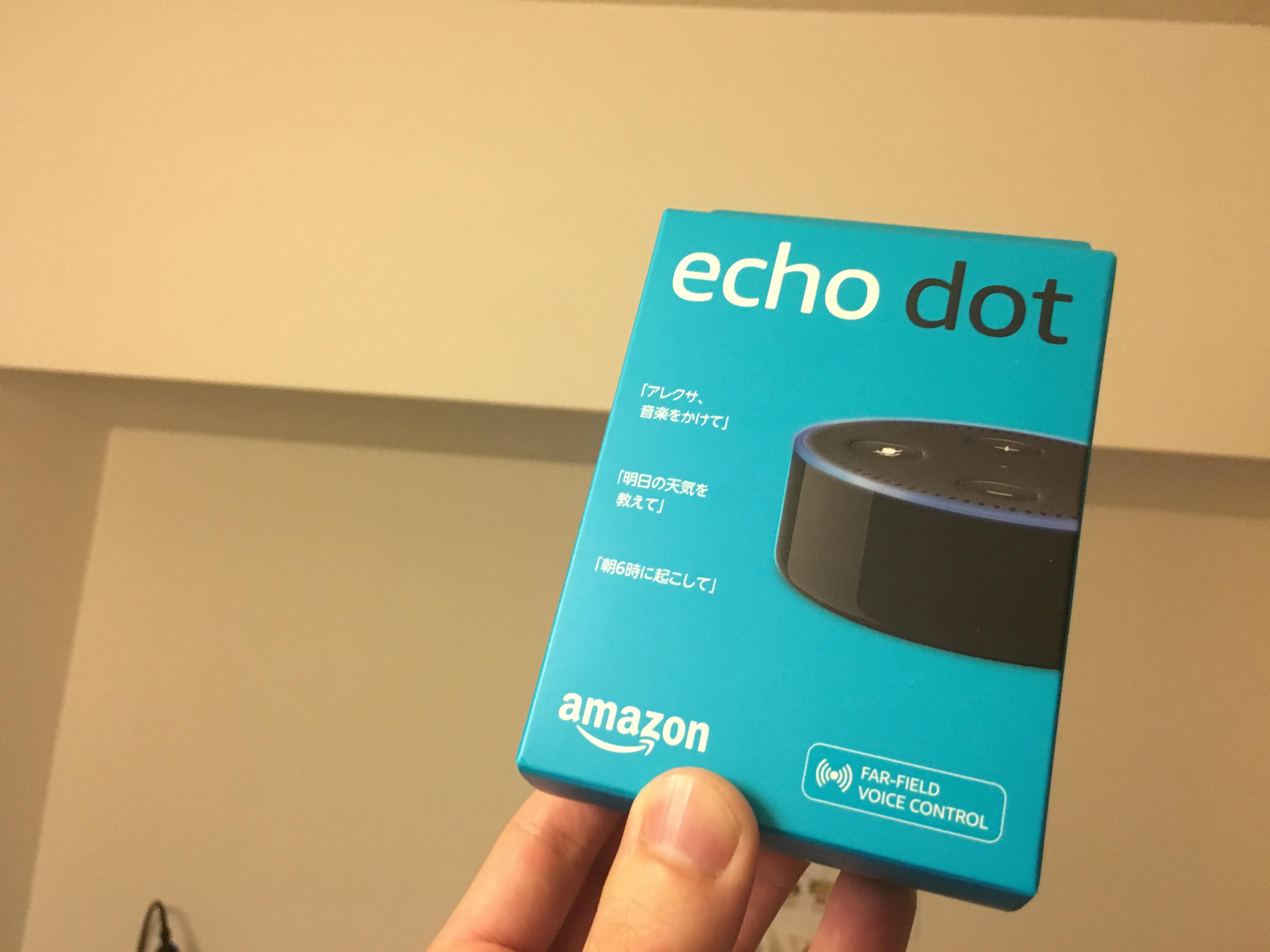 アレクサ・Amazon Echo dotの僕だけの変わった楽しみ方。