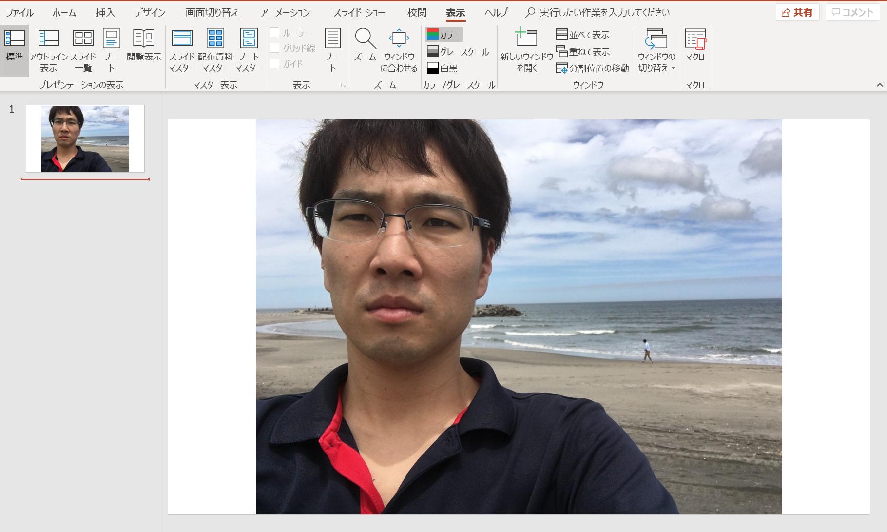 PowerPoint(パワポ)で写真にぼかしを入れる方法。一部にぼかしも可能。